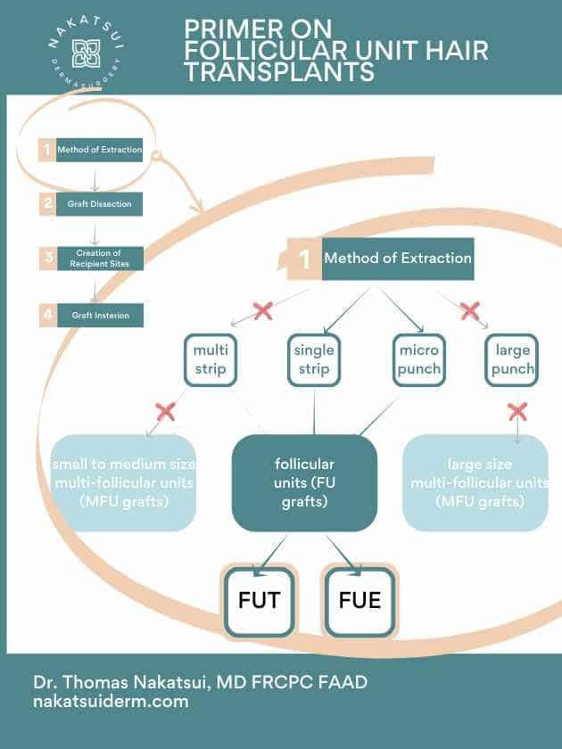 follicular unit hair transplant diagram fut vs fue