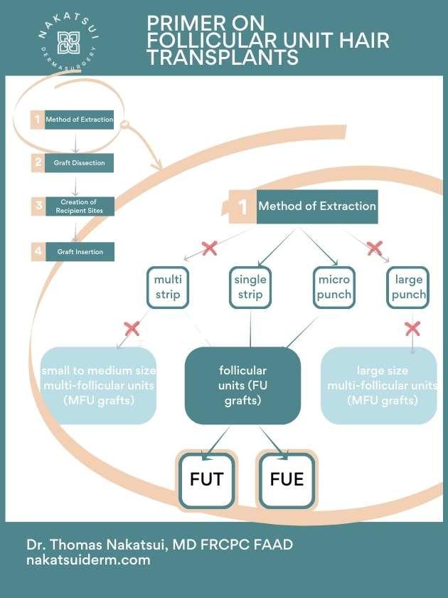 follicular unit hair transplant diagram fut vs fue